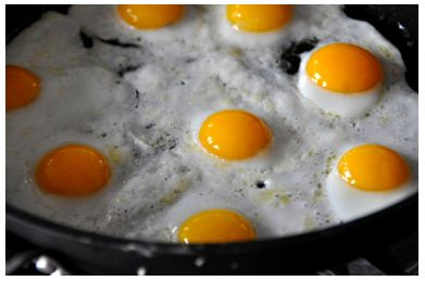 Figure 5. Fried Eggs